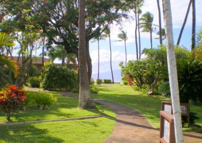 Maui Sands Mature Tropical Garden