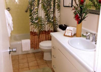ms713 bathS