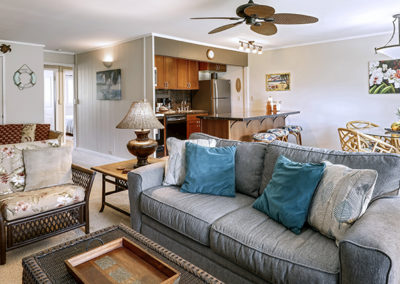30-Interiors-Family Room-53A4365_MS